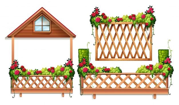 Konstrukcja ogrodzenia z róż i krzewów