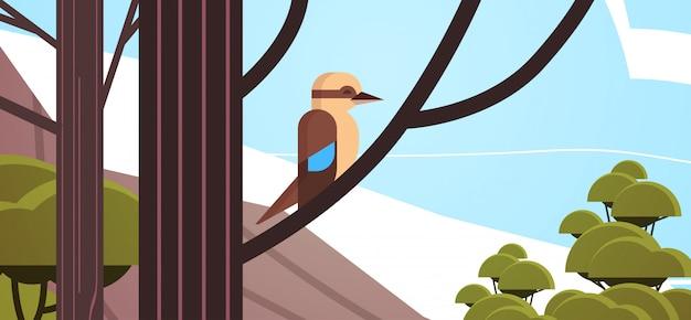 Kookaburra ptak siedzący na gałęzi australijskiego dzikiego zwierzęcia przyrody fauny pojęcie tropikalnej wyspie pejzaż morski poziome