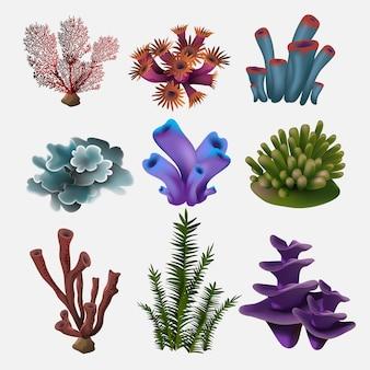 Koral i wodorosty. podwodna flora, akwarium z wodorostami morskimi, wodorosty i korale. zestaw kolorów roślin oceanicznych. ilustracja.
