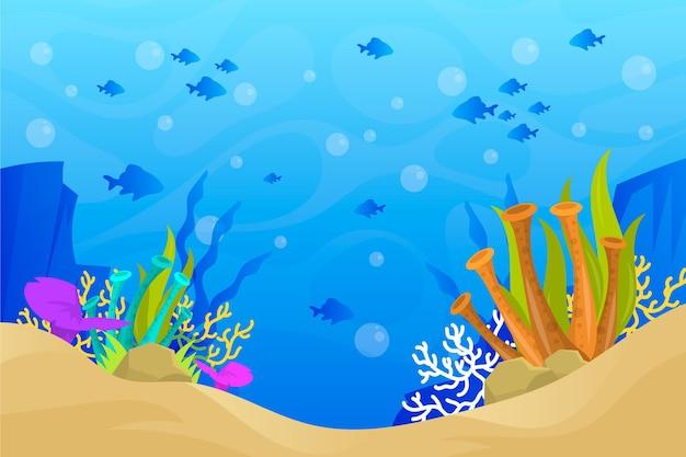 Korale i piasek w tle do wideokonferencji online