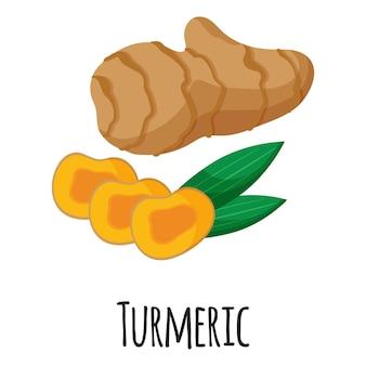 Korzeń kurkumy superfood do projektowania, etykietowania i pakowania szablonów na rynku rolników. naturalna żywność ekologiczna z białkami energetycznymi. ilustracja kreskówka na białym tle wektor.