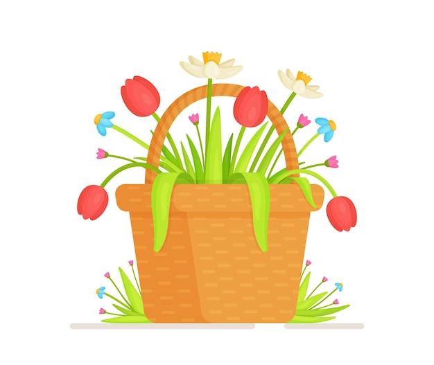 Kosz kwiatów. ilustracja małego kosza z tulipanami i żonkilami. zbieranie kwiatu z kwietnej łąki.