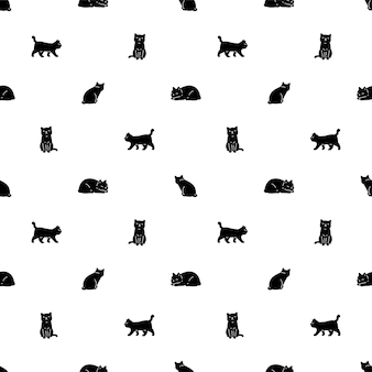 Kot bez szwu perkalowy kotek