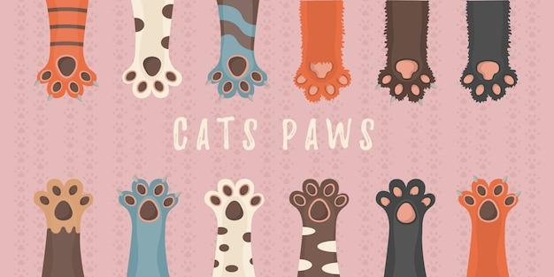Kot i pies łapy, tło, nadruki, rysunek, śliczne zwierzęta nogi tapety. broszura, ulotka, pocztówka. łapy zwierząt na białym tle. ilustracja w płaskiej konstrukcji.