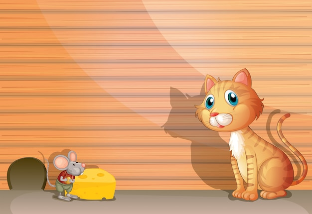 Kot i szczur