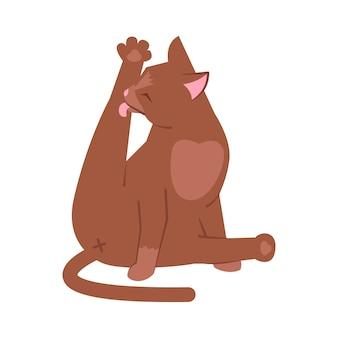 Kot lizanie nogi pół płaskie ilustracja