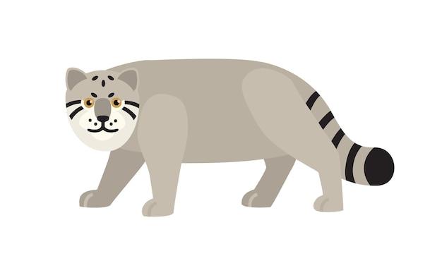 Kot manul lub pallas s na białym tle. pełne wdzięku dzikie mięsożerne zwierzęta skradające się, polujące lub polujące. gatunki fauny azjatyckiej. ilustracja wektorowa kolorowe w stylu cartoon płaskie.