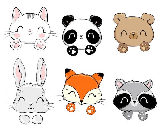 Kot, panda, niedźwiedź, zając, lis, szop pracz.