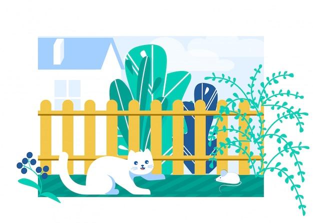 Kot patrzeje myszy w ogródzie blisko ogrodzenia