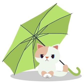 Kot siedzi pod zielonym parasolem. koty wyglądają na nieszczęśliwe.
