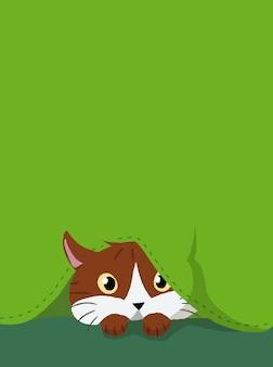Kot ukryty poniżej zielonej tkaniny