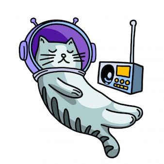 Kot w kasku słuchania muzyki