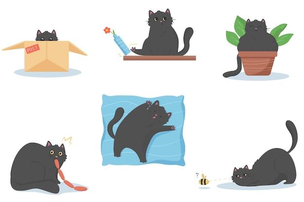Kot w tajemnicy je kiełbaski, kot siedzi w doniczce, kot śpi na miękkiej dużej poduszce, kot popycha wazon z kwiatkiem, kot w skrzynce pocztowej, kot poluje na pszczołę