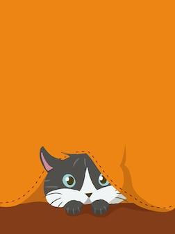 Kotek ukryty poniżej tkaniny pomarańczowej