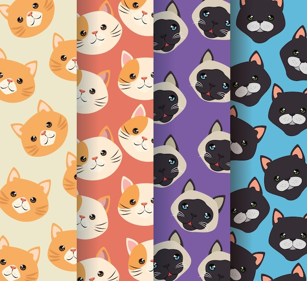 Koty głowy wzory zwierząt domowych