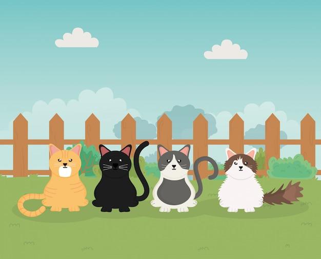Koty i pies siedzi w parku opieki nad zwierzętami