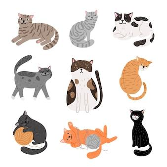 Koty kreskówka fanny w różnych pozach.