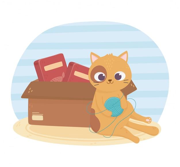 Koty mnie uszczęśliwiają, kot gra w piłkę z wełny i pudełko z jedzeniem