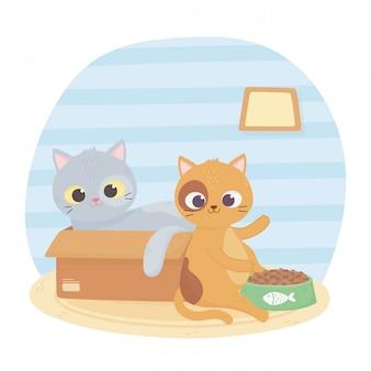 Koty mnie uszczęśliwiają, kot w pudełku i inne dzięki kreskówce o jedzeniu