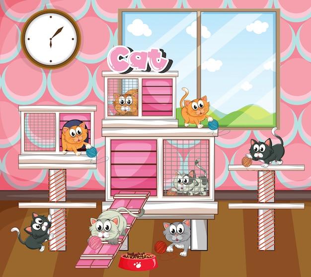Koty w dużej klatce salowej