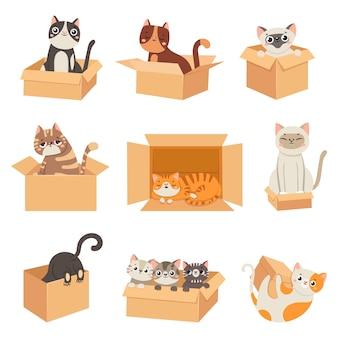 Koty w pudełkach. urocze naklejki z kotem siedzącym, śpiącym i bawiącym się w kartonowym pudełku. śmieszne kocięta ukrywające się. przyjęcie bezdomnego zwierzaka, wektor zestaw. ilustracja zwierzę kotek w pudełku, koci kot zwierzak