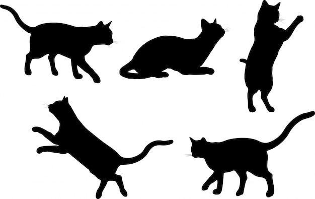 Koty Darmowych Wektorów