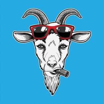 Koza w okularach przeciwsłonecznych