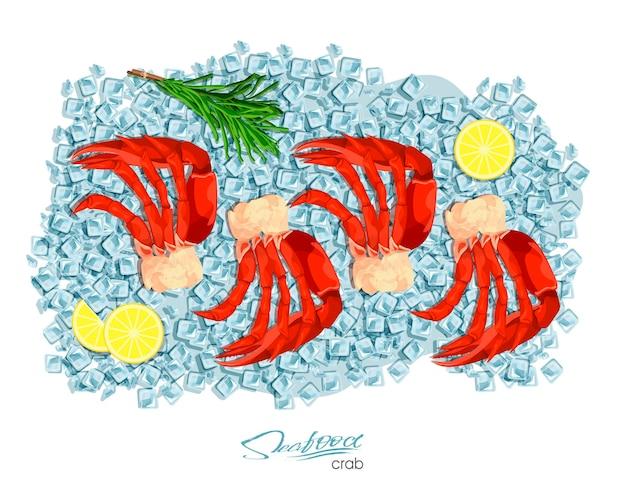 Krab mięsny z rozmarynem i cytryną na kostkach lodu projekt produktu z owoców morza
