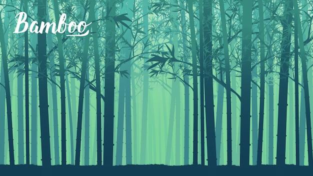 Krajobraz bambusa drzewa w tropikalnym lesie deszczowym, malezja. szablon projektu tapety strony lądowej