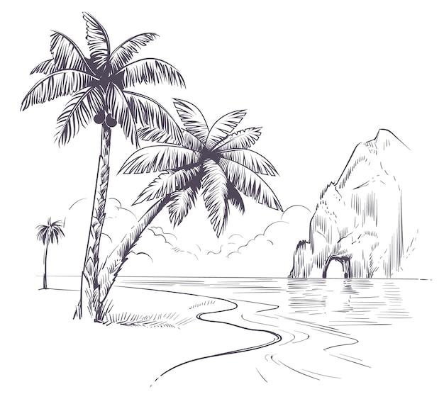 Krajobraz drzewa palmowego. szkic tropikalne palmy wybrzeże oceanu, egzotyczna wyspa hawaje