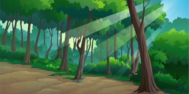 Krajobraz lasów w ciągu dnia