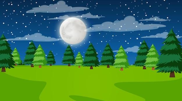 Krajobraz lasu przyrody w scenie nocnej