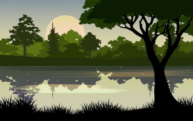 Krajobraz lasu z rzeką