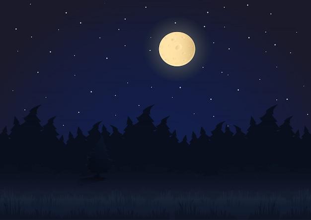 Krajobraz nocny kreskówka