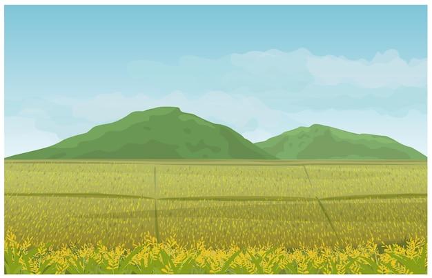 Krajobraz w śródpolnej górze i niebie w wsi.