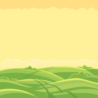 Krajobraz zielonego pola. droga polna.