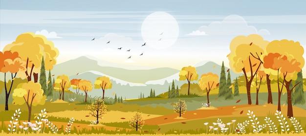 Krajobrazy wsi jesienią, panoramiczny połowy jesieni z polem uprawnym w pomarańczowych i żółtych liściach, panorama widok w sezonie jesiennym