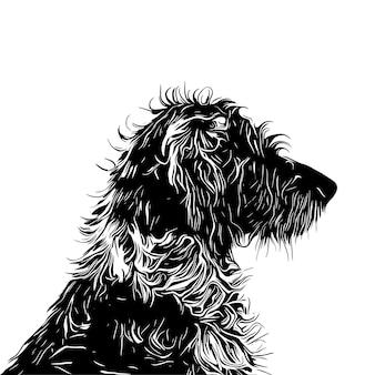 Kręcone włosy pies sylwetka wektor eps 10