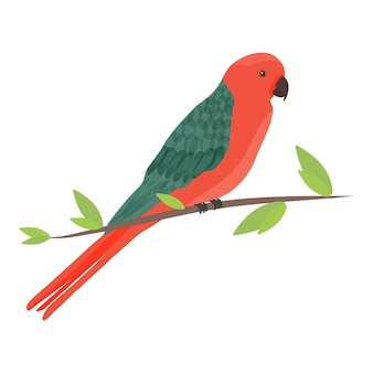 Kreskówka australijska papuga królewska alisterus scapularis w płaskim stylu