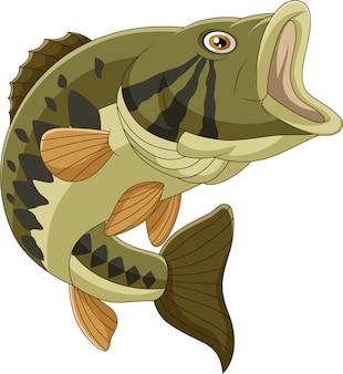 Kreskówka bas ryba odizolowywająca
