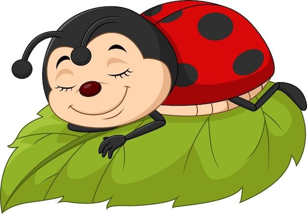 Kreskówka biedronka śpi na liściu