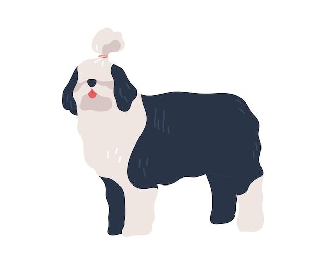 Kreskówka bobtail pies z fryzurą po pielęgnacji płaskiej ilustracji wektorowych. długowłosy czarno-biały zwierzę domowe stojący na białym tle. śmieszne kolorowe zwierzę pozowanie.