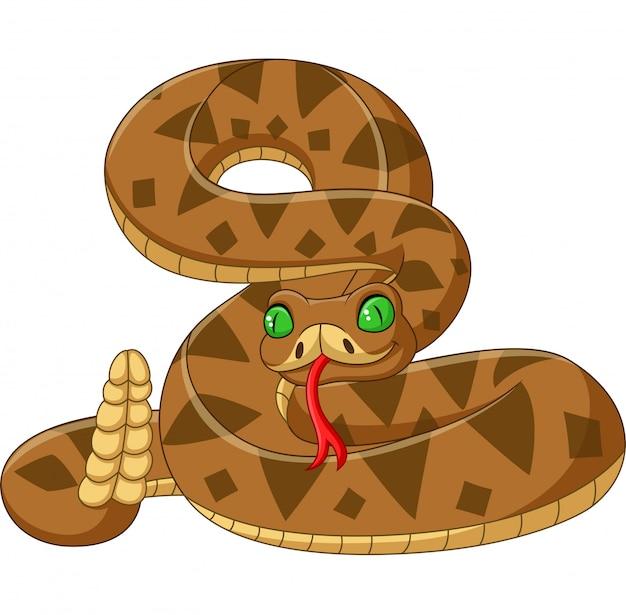 Kreskówka brązowy wąż na białym tle