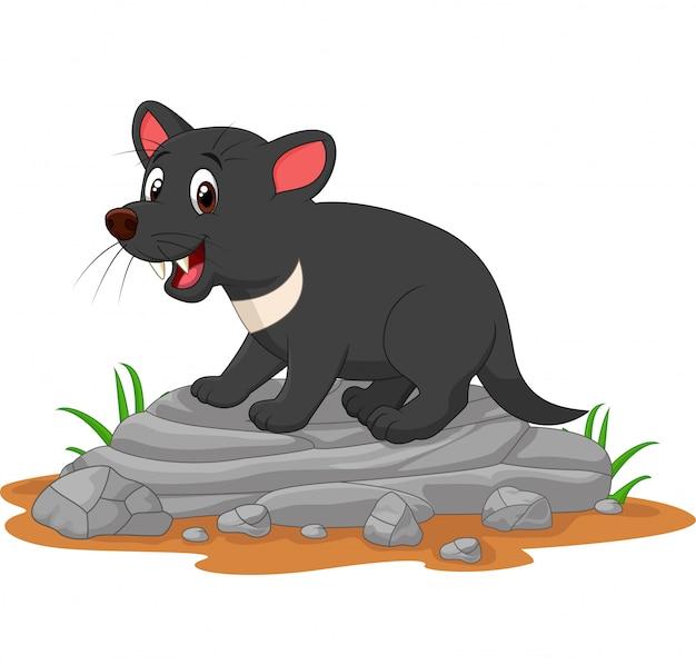 Kreskówka diabeł tasmański na skale