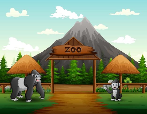 Kreskówka dużego goryla z jej młodym w otwartej ilustracji zoo
