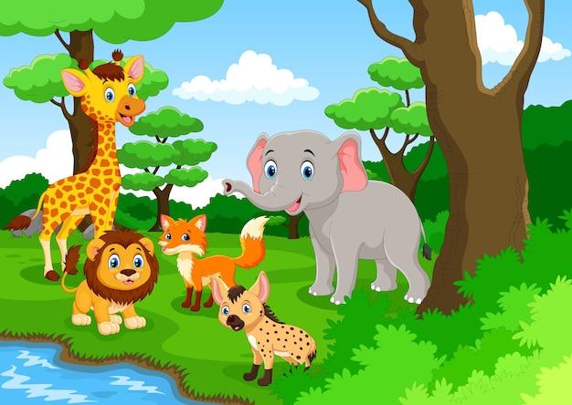 Kreskówka dzikich zwierząt