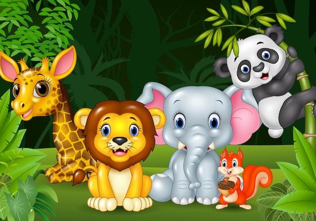 Kreskówka dzikie zwierzę w dżungli