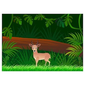 Kreskówka jelenia na tle lasu
