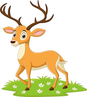 Kreskówka jelenia na trawie
