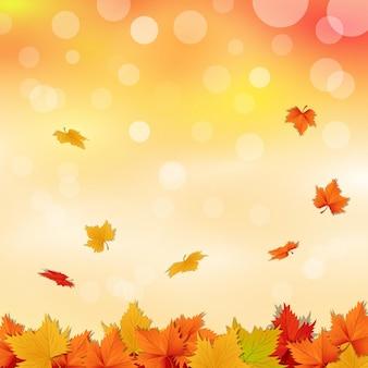Kreskówka jesienne liście tło